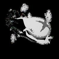 Whale Sailer