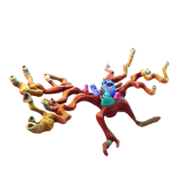 Coral Cruiser