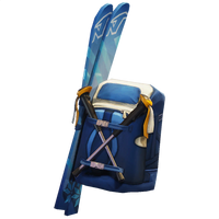 Mogul Ski Bag