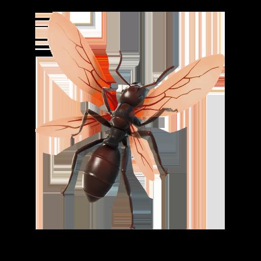 Ant-Tonio